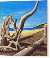 Driftwood - Nature's Artwork Wood Print