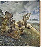 Driftwood On Rialto Beach Wood Print