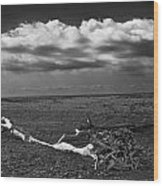 Driftwood On The Beach At Whitefish Point Wood Print