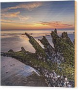 Driftwood On The Beach Wood Print