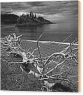 Driftwood On The Shore Near Wawa Ontario Canada Wood Print