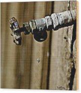 Drip...drip...drip...drip Wood Print by Trish Tritz