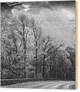 Drive Through The Mountains Bw Wood Print