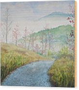 Driving Down The Mountain Wood Print