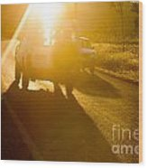 Driving Into The Sun Wood Print by Colin and Linda McKie