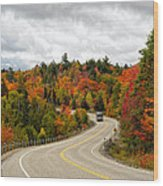 Driving Through Algonquin Park In Fall Wood Print
