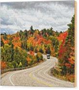 Driving Through Algonquin Park - V2 Wood Print
