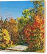 Driving Through Autumn Wood Print