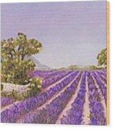 Drome Provence Wood Print
