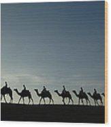 Dromedary Camels In Thar Desert Wood Print