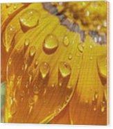 Droplets Of Gold Wood Print