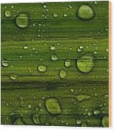 Droplets Wood Print