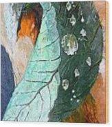 Drops On A Leaf Wood Print by Daniel Janda