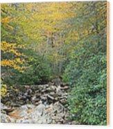 Dry Creek Bed Wood Print