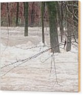 Dry Creek-but Swift Waters Wood Print