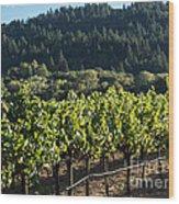 Dry Creek Road Vineyard Wood Print