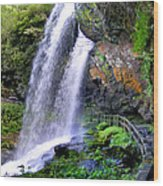 Dry Falls 2 In Western North Carolina Wood Print