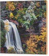 Dry Falls In Autumn Wood Print