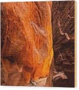 Dry Fork Slot Canyon Wood Print