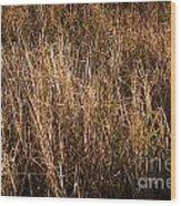 Dry Grass Wood Print