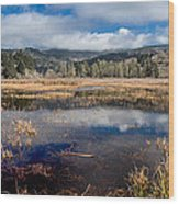 Dry Lagoon In Winter Panorama Wood Print