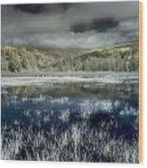 Dry Lagoon Winter Wood Print
