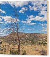 Dry Landscape Wood Print