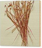 Dry Leaves Wood Print