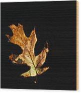 Dry On Water Wood Print