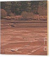 Dry Reservoir  Wood Print