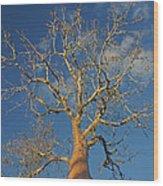 dry season in Madagascar Wood Print