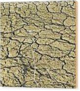 Dry Soil In Lake Bottom During Dryness Wood Print