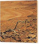 Dry Spell Wood Print by Vishakha Bhagat