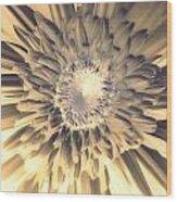 Dsc207-003 Wood Print