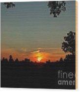 Dscf13477 Wood Print