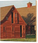 Dual Barns-3811 Wood Print