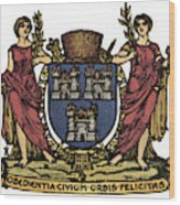 Dublin Coat Of Arms Wood Print