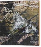 Dublin Ohio Waterfall In Spring 1 Wood Print