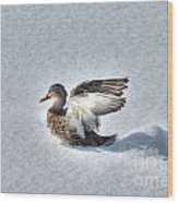 Duck Angel Wood Print