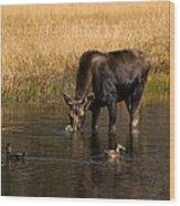 Duck Duck Moose Wood Print