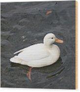 Duck Getting Feet Wet Wood Print