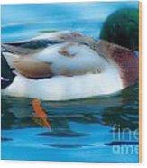 Duck Glide Wood Print