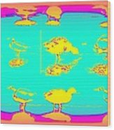 The Ducks Must Have Their Own Heaven Wood Print