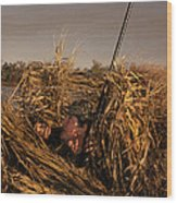 Duck Hunter In Blind Wood Print by Ron Sanford