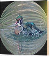 Duck In A Bubble  Wood Print