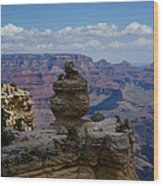 Duck On A Rock Grand Canyon Wood Print