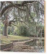 Duck Pond Cumberland Wood Print