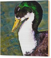 Duck Profile Wood Print