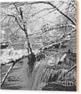 Duck River At Old Stone Fort Wood Print