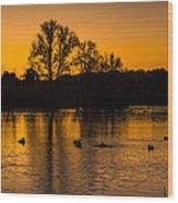 Ducks At Sunrise On Golden Lake Nature Fine Photography Print  Wood Print
